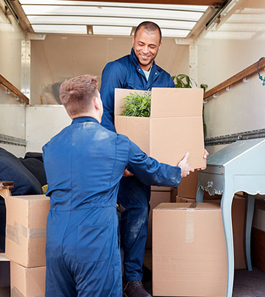 Man and a Van London expert doing packing and removal job